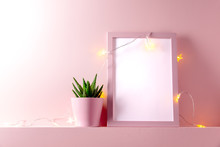 Pink Frame With Succulent Plants