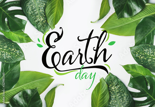 Obraz Text EARTH DAY and fresh tropical leaves on white background - fototapety do salonu