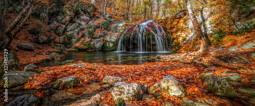 Obraz Waterfall in the forest in autumn among the fallen colorful bright leaves. - fototapety do salonu