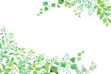 グリーンの草花の2隅...