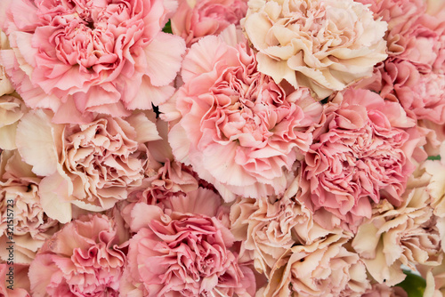 Photo Floral blush and pink carnation flat lay flower background