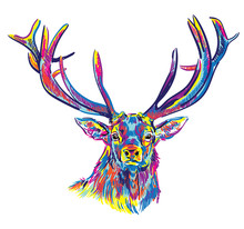Deer With Big Horns. Stylish M...