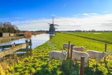 Rural Landscape - View Of A Fl...