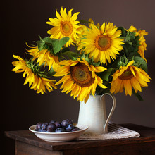 Sunflowers And Plums. Bouquet ...