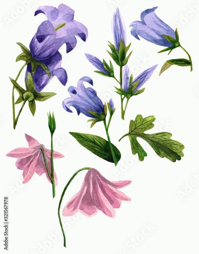 Garden bell and Aquilegia set Canvas Print