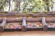 晩秋、京都寺院の瓦塀