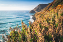 Big Sur, California Coast. Sce...