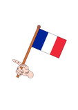 the national flag of france