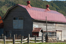 北海道酪農農家の畜舎