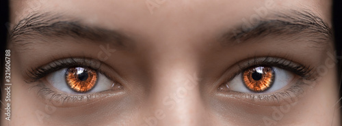 Fototapeta Beautiful brown glowing eyes of a girl. Photographed close-up. obraz