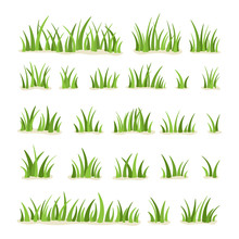 Set Of Green Grass Isolated On...