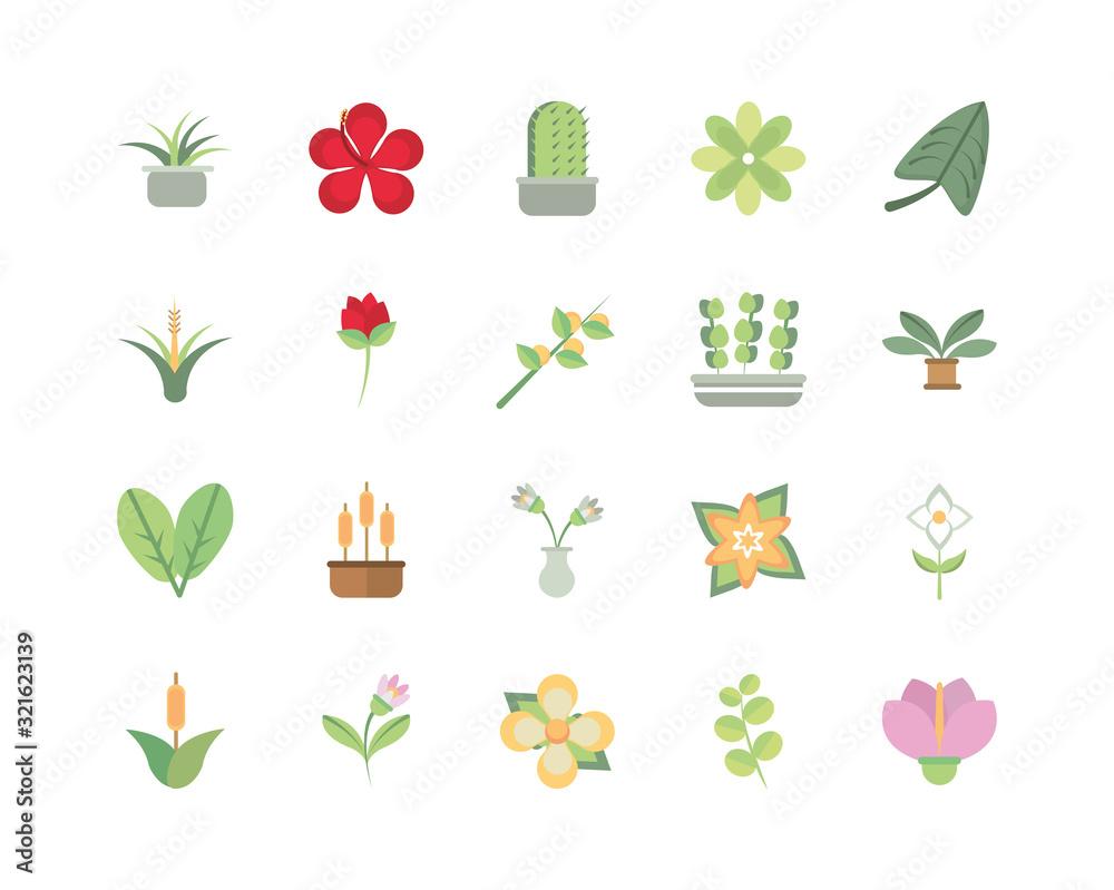 Fototapeta flower foliage decoratiopn natural floral botanical icons set