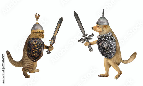 The dog and the cat are armed with shields with a dragon and inlaid swords Fototapeta