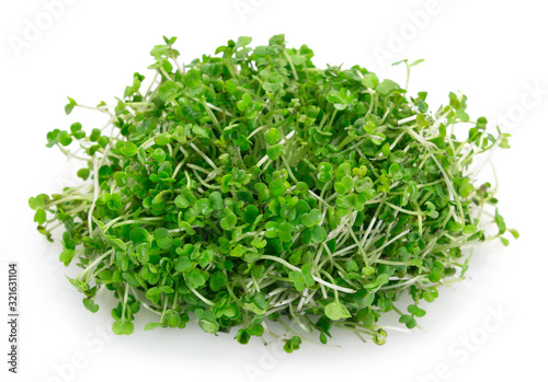Photo Micro green arugula isolated on white background