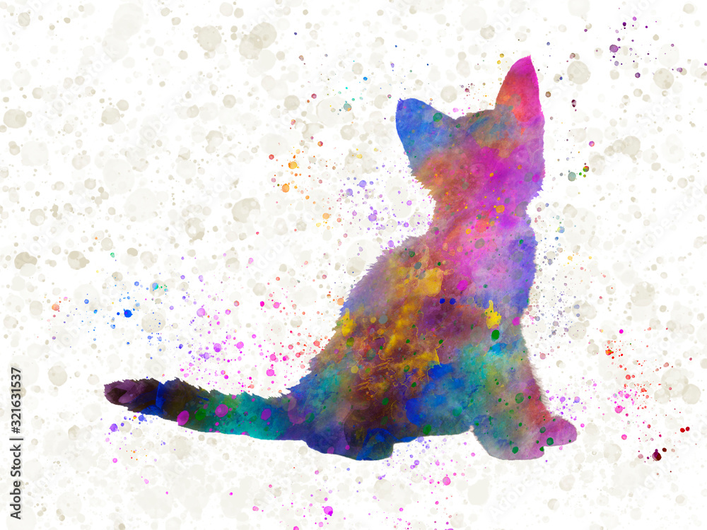 Laperm cat 24 in watercolor