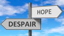 Despair And Hope As A Choice -...