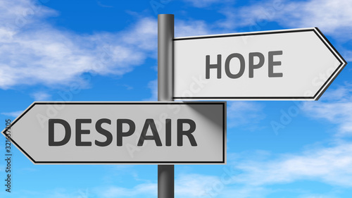 Obraz na plátně Despair and hope as a choice - pictured as words Despair, hope on road signs to