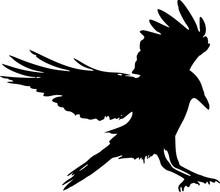 Black Silhouette Of A Raven La...