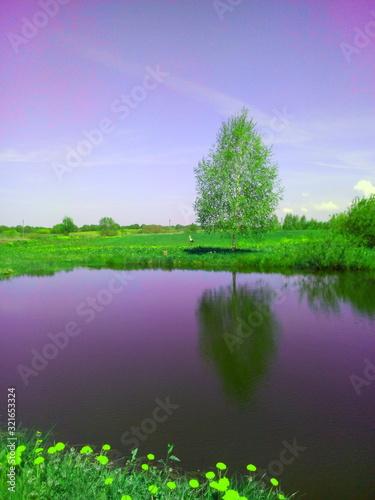Fototapeta landscape with river and trees obraz na płótnie