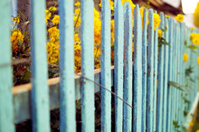Background Blue Fence In The V...