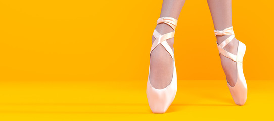 3D Ballerina legs in light classic pointe shoes.