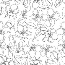 Vector Seamless Pattern Contou...