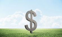 Dollar Sign On Green Meadow