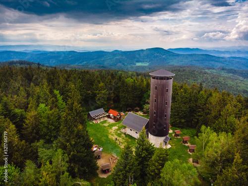 Fototapeta Borówkowa góra obraz