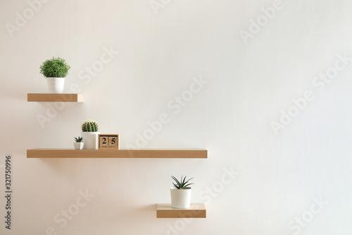 Vászonkép Wooden shelves with beautiful plants and calendar on light wall