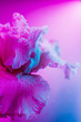 Leinwanddruck Bild Vivid neon colored iris flower bud on multi colored background.