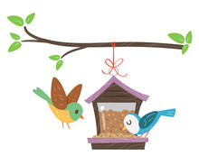 Birds Bird Feeder Illustration