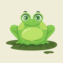 Frog Lily Pad Illustration