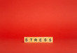 Leinwanddruck Bild - Stress concept. Stress on a red empty background. A feeling of anxiety, tension, fear and anger