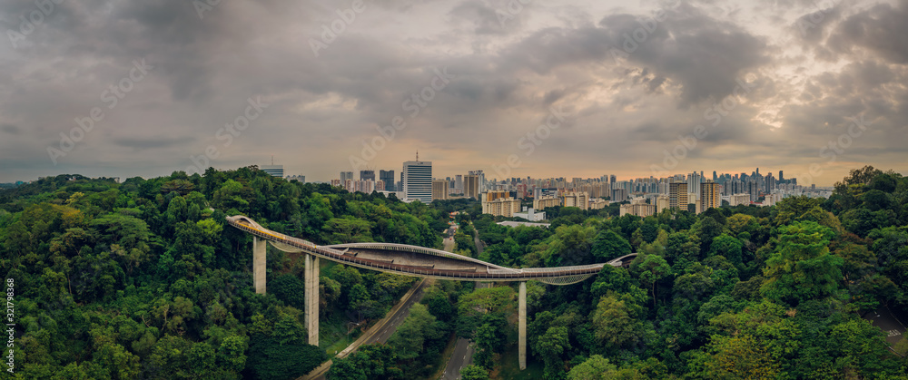 Apr 09/2019 Early morning at Henderson Waves bridge - aerial view, Singapore