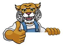 A Wildcat Cartoon Animal Masco...