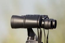 Bird Watching With Binoculars ...