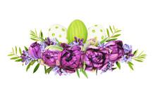 Purple Peony Tulips, Lilac Flo...