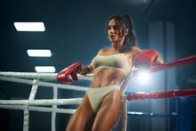 Female Fighter In Underwear Po...