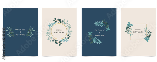 Photo Collection of natural background set with leaf,geometric