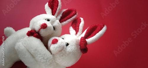 Two white plush rabbits cuddling Canvas Print