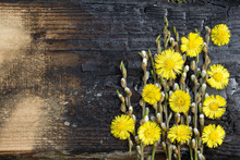 Creative Top View Willow Tree Blooming Flowers Brunch A On Rustic Wooden Background With Copy Space