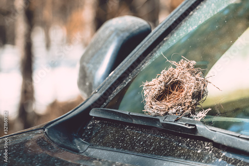 Vászonkép Empty nest made by birds from grass, branches and pine needles on the windshield wiper of car