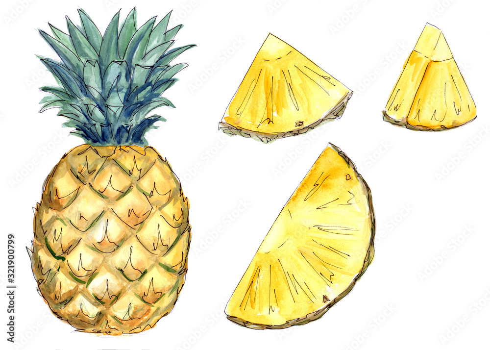 Fototapeta watercolor pineapple and pineapple pieces on a white background