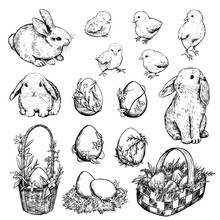 Collection Of Vector Easter Illustrations. Set Of Rabbits, Chickens, Baskets, Eggs, Nest. Hand Drawn Ink Sketches Isolated On White. Elements For Easter Holiday Design, Card, Poster, Print, Wrapping.