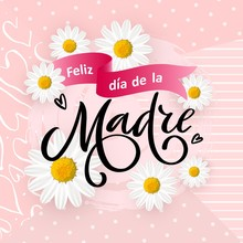 Spanish Translation Happy Mothers Day- Feliz Dia De La Madre. Vector Card, Poster Happy Mothers Day In Spanish Language With Spring Flowers On Pink Background. Hand Written Typography Lettering.