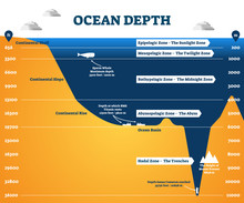 Ocean Depth Zones Infographic,...