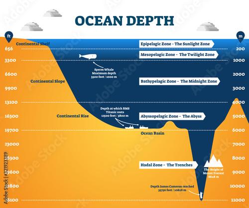 Fototapeta Ocean depth zones infographic, vector illustration labeled diagram