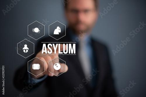 Asylum Wallpaper Mural