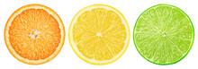 Citrus Slice, Orange, Lemon, L...