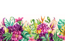 Digital Watercolor Botanical Illustration, Wild Tropical Flowers Isolated On White Background. Paradise Garden. Palm Leaves, Monstera, Calla Lily, Frangipani, Hydrangea, Gerber. Floral Arrangement
